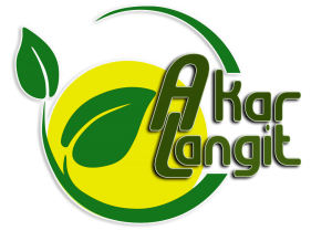 logo awal PNG for WEB